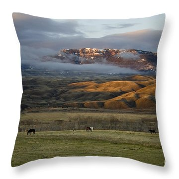 North Fork Pasture-signed Throw Pillow by J L Woody Wooden
