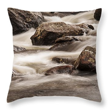 North Inlet Throw Pillow by Lee Kirchhevel