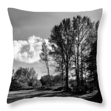 North Lions Park IIi Throw Pillow