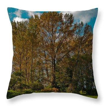 North Lions Park In Mount Vernon Washington Throw Pillow