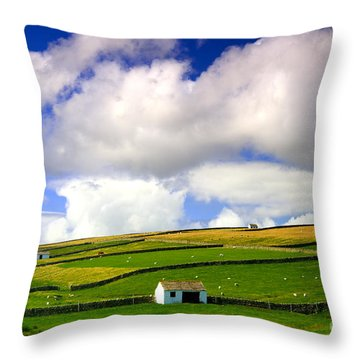 North Pennines Barns In Landscape Throw Pillow