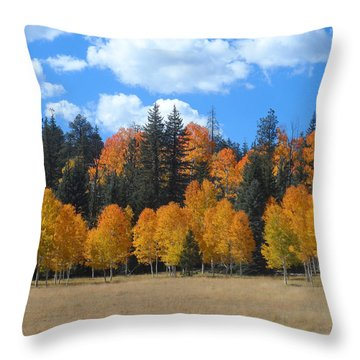North Rim Fall Throw Pillow
