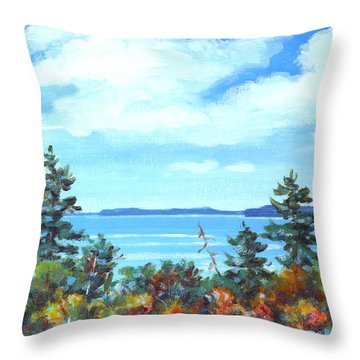 North Sky Sketch Throw Pillow by Richard De Wolfe