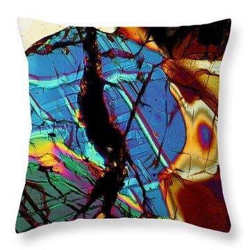 Rock Tortoise Throw Pillow