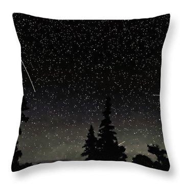 North Woods Throw Pillow by Steve Harrington