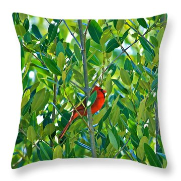 Northern Cardinal Hiding Among Green Leaves Throw Pillow by Cyril Maza