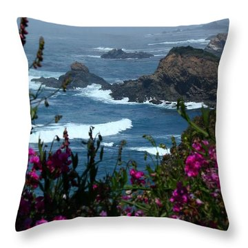 Northern Coast Beauty Throw Pillow