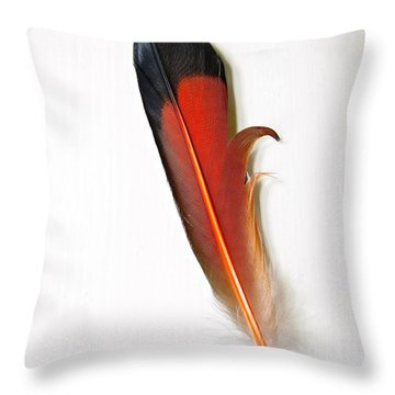 Northern Flicker Tail Feather Throw Pillow