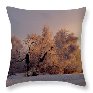 Throw Pillow featuring the photograph Northern Light by Jeremy Rhoades