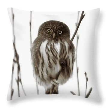 Northern Pygmy Owl - Little One Throw Pillow