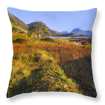 Northern Sunset Throw Pillow