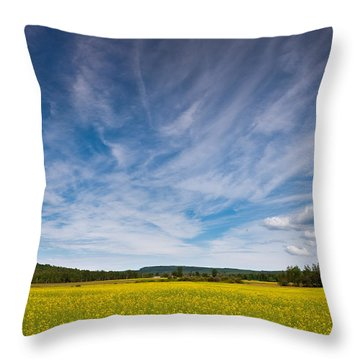 Northern Wisconsin Field Throw Pillow