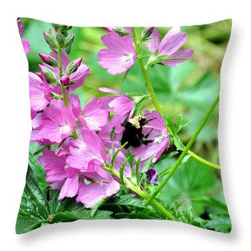 Throw Pillow featuring the photograph Northwest Native Rose Checker Mallow  3 by Tanya  Searcy