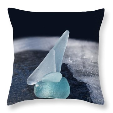 Northwest Passage Throw Pillow by Barbara McMahon