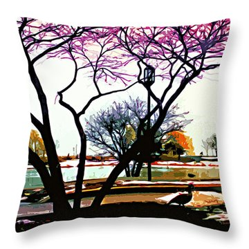 Northwestern U. Campus Throw Pillow