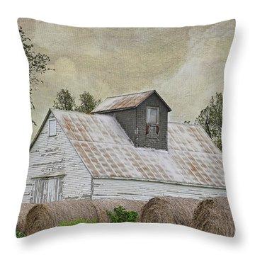 Nortonville Kansas Throw Pillow by Liane Wright