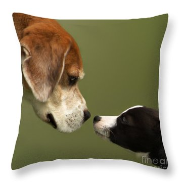 Nose To Nose Dogs 2 Throw Pillow