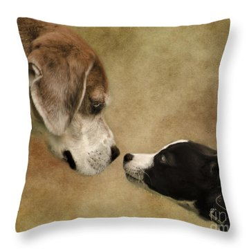 Nose To Nose Dogs Throw Pillow