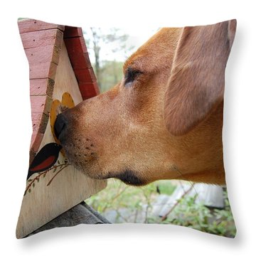 Throw Pillow featuring the photograph Nosey by Mim White