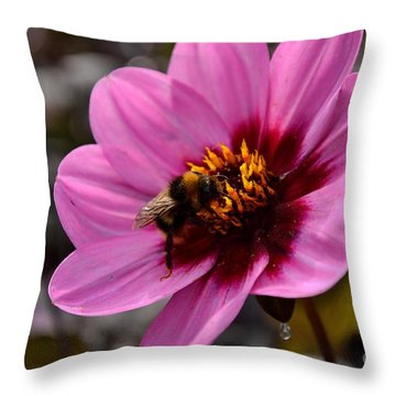 Nosy Bumble Bee Throw Pillow by Scott Lyons