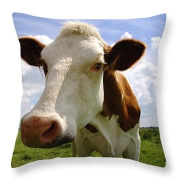 Nosy Cow Throw Pillow