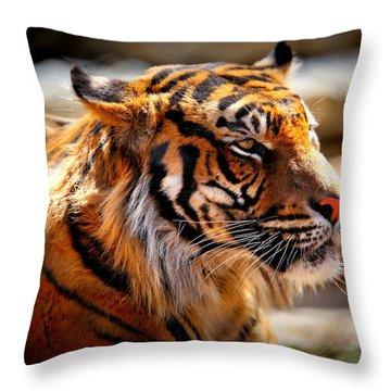 Not A Tigger Throw Pillow by Lynn Sprowl