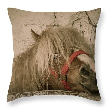 Not So Innocent Throw Pillow by Bianca Nadeau