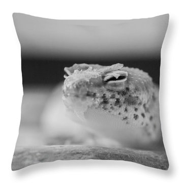 Not Sure If Throw Pillow