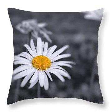 November Daisy Throw Pillow