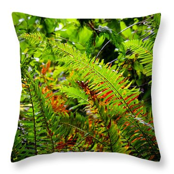 Throw Pillow featuring the photograph November Ferns by Adria Trail