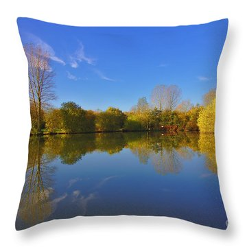 November Lake 1 Throw Pillow