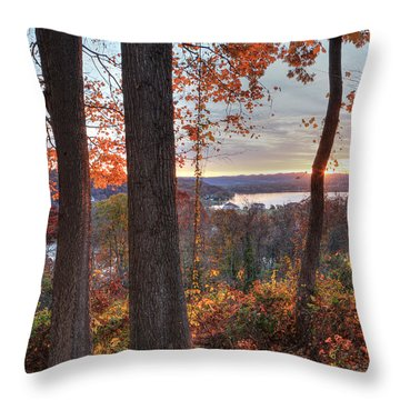November Morning At The Lake Throw Pillow by Jaki Miller