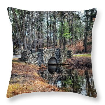 November Reflections Throw Pillow by Tricia Marchlik