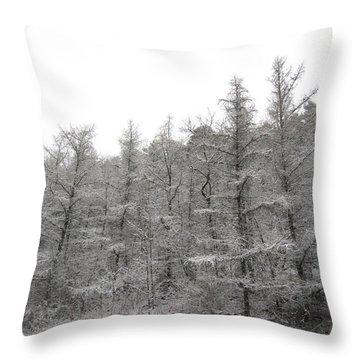 November Storm Throw Pillow