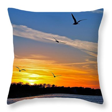 November Sunset Ia Throw Pillow by Frozen in Time Fine Art Photography