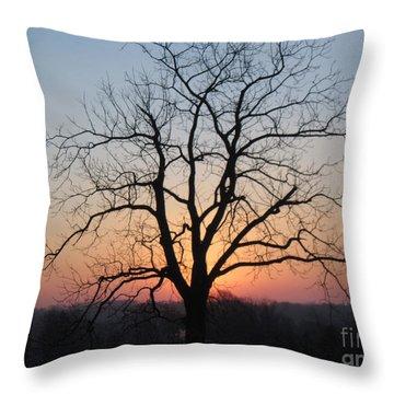 November Walnut Tree At Sunrise Throw Pillow
