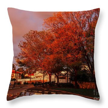 Now That's A Good Morning Throw Pillow by Arik Baltinester