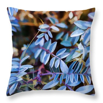 Now Thats Blue Throw Pillow