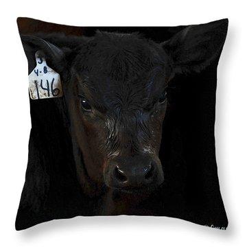 Number 146 Throw Pillow