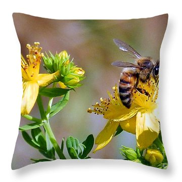 Throw Pillow featuring the photograph Nummy Honey by Julia Hassett