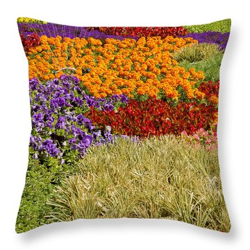 Throw Pillow featuring the photograph Nursery Potted Garden Plants Arrangement by JPLDesigns