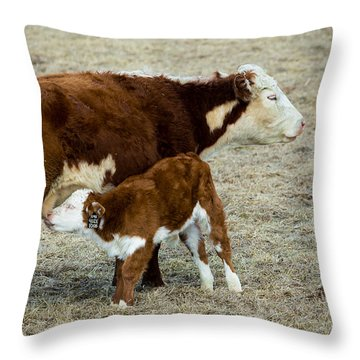 Nursing Calf Throw Pillow