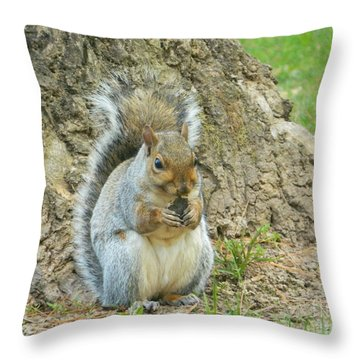 Throw Pillow featuring the photograph Nut Break For Chubber by Emmy Marie Vickers