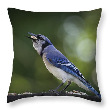 Nut Cracker Throw Pillow by Cris Hayes