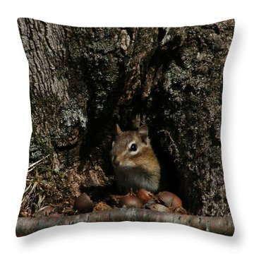 Nut Therapy  Throw Pillow by Neal Eslinger