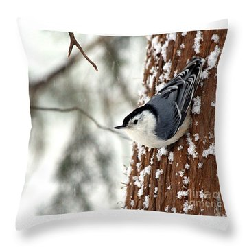 Throw Pillow featuring the photograph Nuthatch In Snow Storm by Paula Guttilla