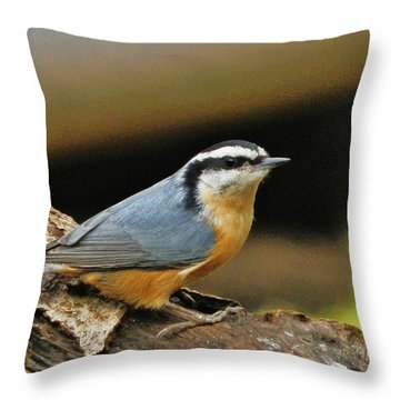 Throw Pillow featuring the photograph Nuthatch Pose by VLee Watson