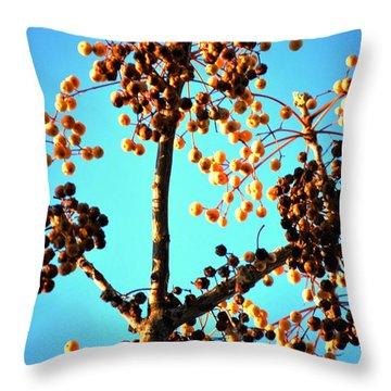 Nuts And Berries Throw Pillow by Matt Harang