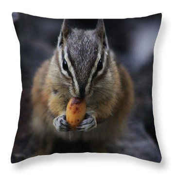 Nuts Throw Pillow by Alyce Taylor