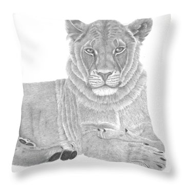 Throw Pillow featuring the drawing Nyah The Lioness by Patricia Hiltz